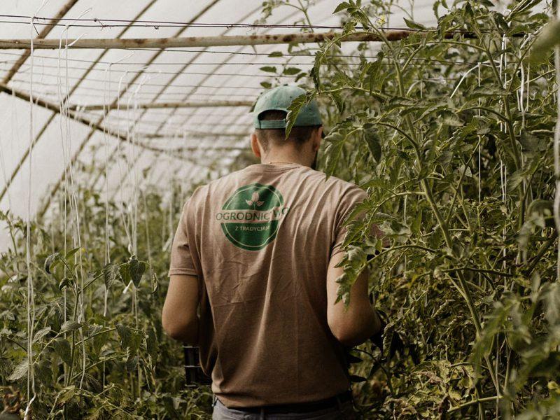 ogrodnictwo z tradycjami film dokumentalny studio filmowe